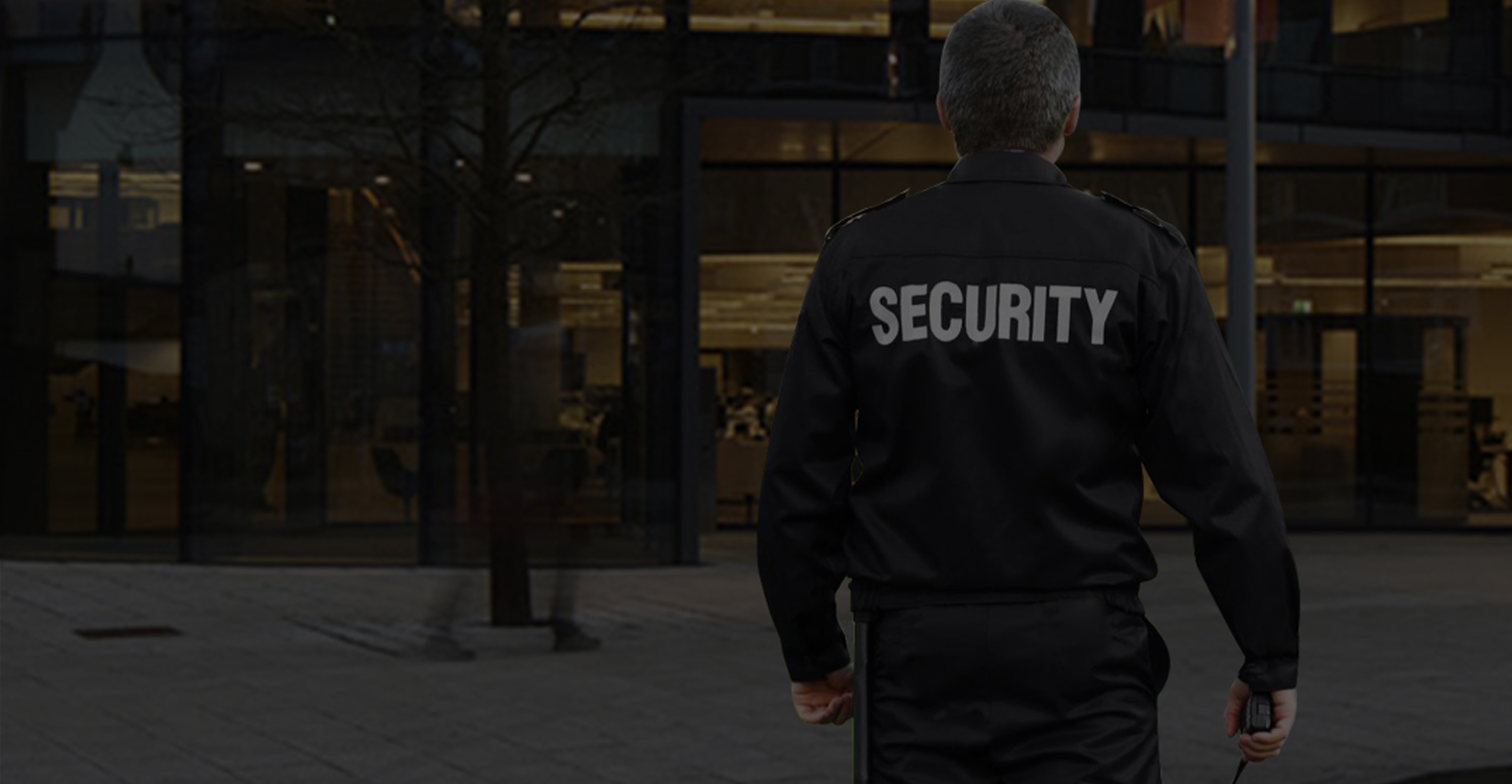 Security Services Ireland